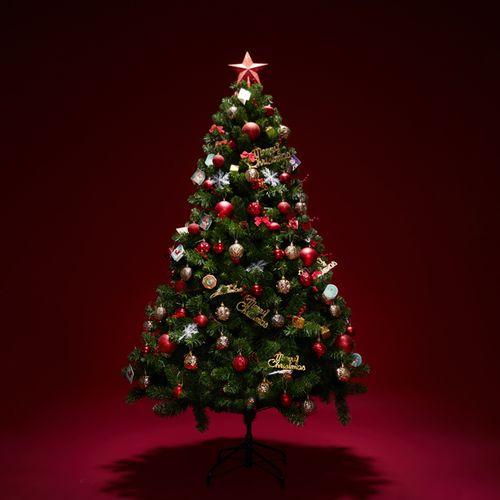 圣诞树家用1.2米1.5米1.8米出口加密套餐门店商场酒店