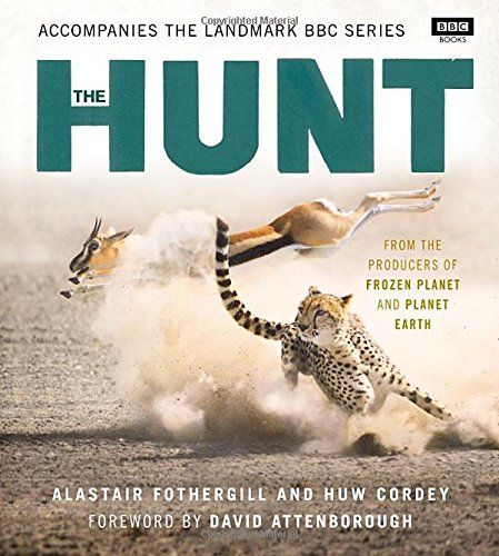 猎捕 the hunt 英文原版 bbc自然系列纪录片 冰冻星球