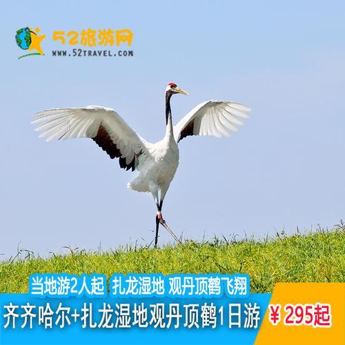 齐齐哈尔当地游扎龙自然保护区一日游观赏仙鹤+门票直通车+车费