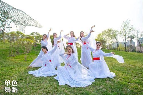 新古典演出服女单色舞蹈桃花诺同款舞蹈服清新淡雅古风离人愁表演