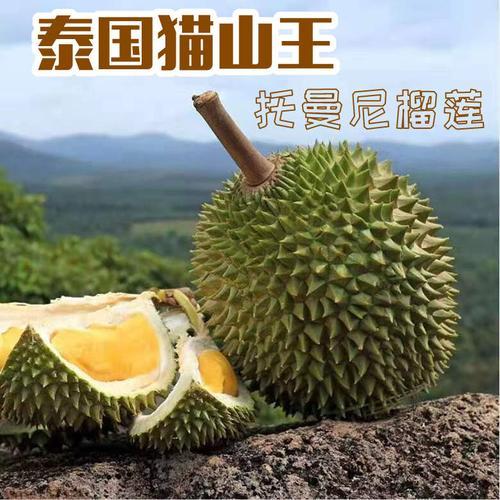 泰国托曼尼榴莲新鲜水果老树猫山王巴掌榴莲托马尼一