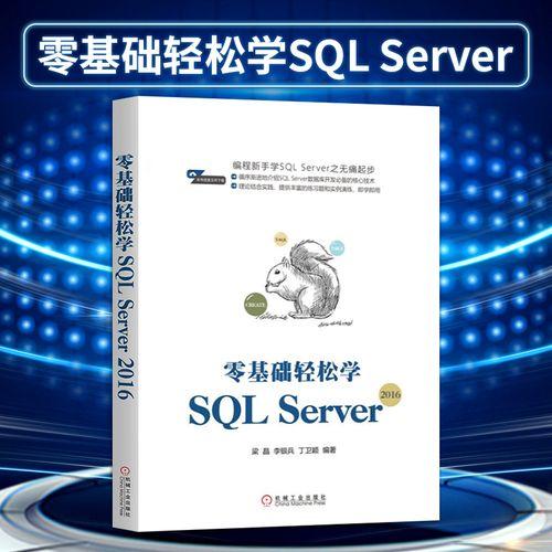 编程新手sql无痛起步 sql数据库开发核心技术 sql数据库设计教程 sql