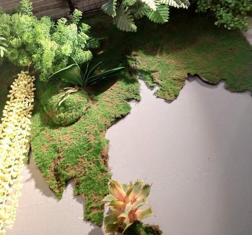 仿真青苔 仿真草皮 草坪 植物苔藓 商场花墙盆景盆栽