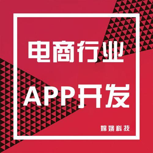 电商app开发直播带货小程序社交生鲜新零售b2b2c跨境