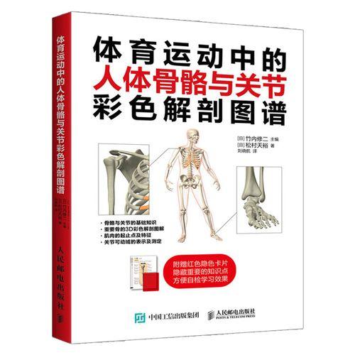 体育运动中的人体骨骼与关节彩色解剖图谱 骨和重要关节解剖学名称