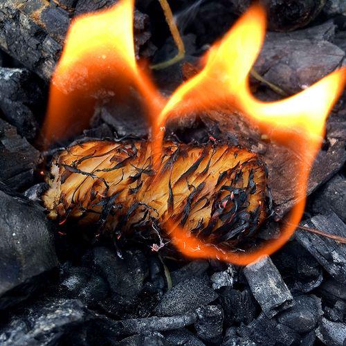 烧烤引火块木丝蜡块燃块炭精固体酒精助燃剂点炭木炭