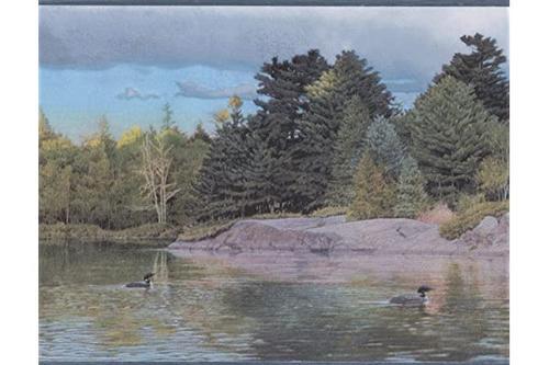 河上的森林鸭子蓝色天空现实自然壁纸边框复古设计,卷