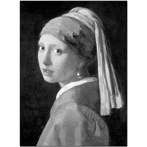 英文原版珍藏版艺术绘画图书 画册 带珍珠耳环的少女