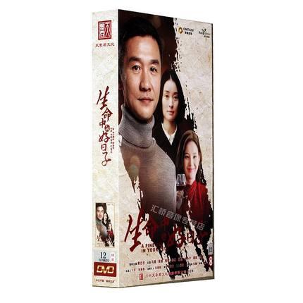 正版电视剧 生命中的好日子 精装珍藏版12碟dvd黄志忠吴越