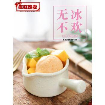 硬冰淇淋粉 自制家用手工diy雪糕粉草莓芒果味冰激凌粉100g 香草味100