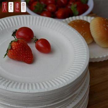 水果拼盘盘子一次性50个/5-9英寸一次性纸盘 烧烤画画